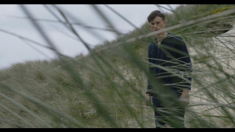 ...entre les dunes (II).