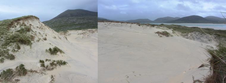 Le lieu à ratisser -avant que nous n'explosions le sable.